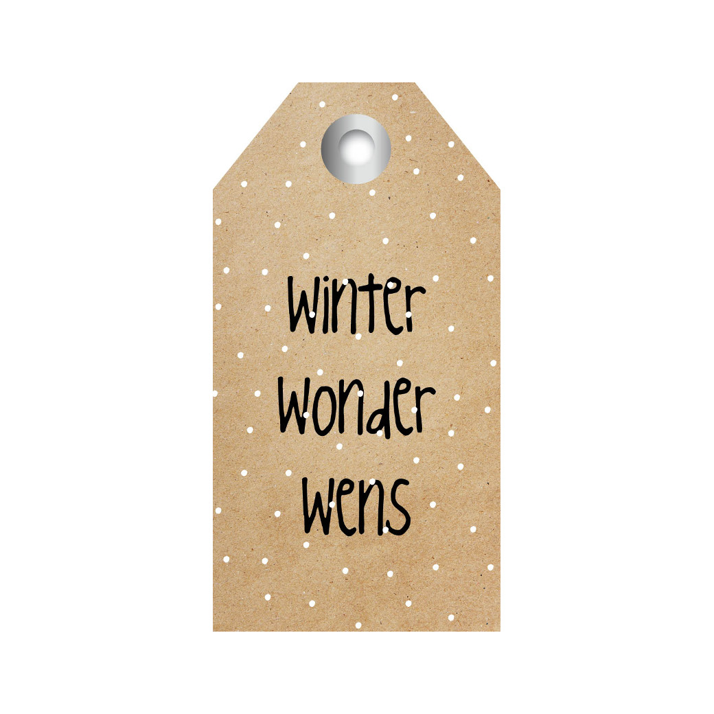 ZINVOL kadokaart - Winter wonder wens - 5 stuks